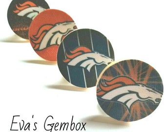 Denver Broncos Magnets