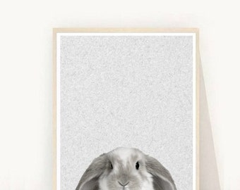 Bunny Print, Rabbit Print,  Bunny Nursery Art,  Printable Art,  Wall Art,  Digital Download, Wall Decor,  Animal Print, Nursery Art