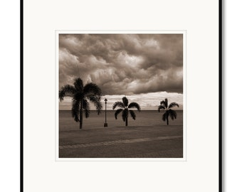 Black and white photography, sepia prints, Cebu Philippines, stormy sky, ocean palm trees, black and white, framed photo by Adrian Davis
