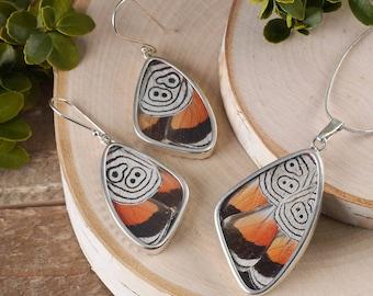 Set Real Butterfly Wing Earrings & Butterfly Wing Pendant in Sterling Silver - Butterfly Earrings, Butterfly Pendant Butterfly Jewelry J1165