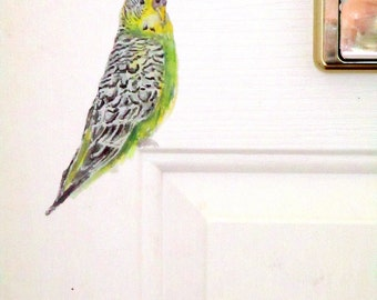 Budgie home decor, bird wall stickers, budgies, bird wall decals, budgerigar, bird decals, wall decals, bird home decor, quirky wall decals