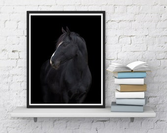 Horse printable art Black white horse Horse print Horse home decor Kids room art Horse photography Instant download Horse digital print