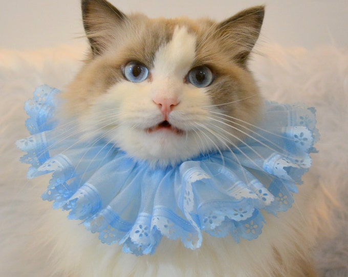 Featured listing image: Blue Elizabethan Ruff for Cat or Dog -  Fancy Neck Tutu Costume for Cats & Dogs - Blue Ruff - Pink Ruff - Royal Cat