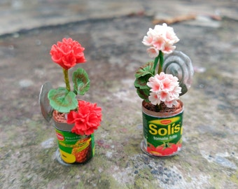 Red or pink Geraniums in Tin of canned