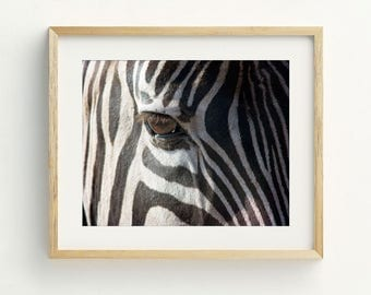Zebra Wall Art zebra wall art | etsy