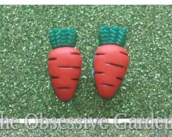Cute Carrot Studs Novelty Food Earrings