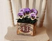 Dolls House Miniature Pansy Planter