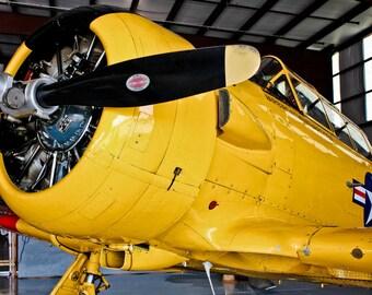 North American  T-6 Texan Airplane Fine Art Print