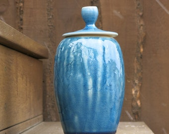 Aqua Blue Lidded Jar Home Decor Storage Container in Floral Texture and Crackly Drippy Glaze, Handmade Artisan Pottery by Licia Lucas Pfadt