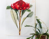 Vintage Botanical Print  / Waratah fabric wall art/ Red flower wall art / bedroom wall art / Native Australian flower wall art/ bedroom