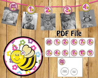 bee picture banner bee photo banner sweet as can 1 year banner girl 1st birthday party decorations hot pink yellow (DIY Printable PDF File)