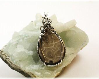Petoskey Stone Jewelry / Wire Wrapped Jewelry / Wire Wrapped Petoskey Stone Pendant