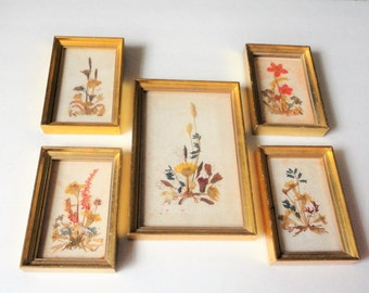 REICHLIN Vintage Dried Picture Lot of 5 Home Decor Shabby Chic Handmade in Switzerland H Kirsch Imports