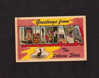 Greetings From Louisiana Postcard,Louisiana Postcard, LA Postcard, Large Letter Postcard,Pelican, Linen Postcard, Curteich Postcard