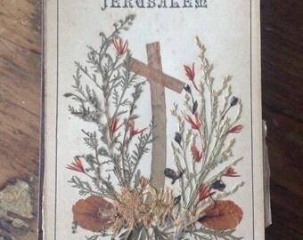 Herbarium, flowers from Jerusalem