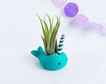 Narwhal Air Planter, Ocean Decor, Mini Planter, Desk Accessory, Gifts for Her, Mom Gift, Unique Gift Idea, Teacher Gift, Air Plant Holder