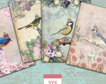 Little BIRDS |  Shabby Chic Style | Digital Collage Sheet Download |  For postals, gift tags, scrapbooking, invitations, cards etc...