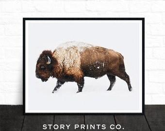 Buffalo Print, Bison Print, Large Wall Art Print, Animal Prints, Animal Poster Art, Living Room Art, Boys Bedroom Decor, Farmhouse Decor