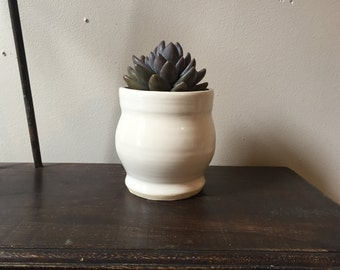 White Succulent Planter