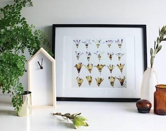 Purple hyacinth Giclee print/Limited edition A3,A2,A1 print/Original artwork/Real pressed purple Hyacinth flowers/Resin artwork