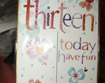 Your Thirteen Today Have Fun  Birthday Card