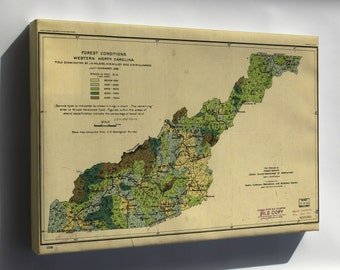 Canvas 16x24; Forest Map West North Carolina 1909