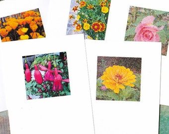 Garden Flowers Boxed Set of 5 Note Cards