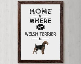 Welsh Terrier,  Welsh Terrier gift,  Terrier, Welsh Terrier dog, Airedale Terrier, Dog gift, Dog print, Welshie, Dog lover, terrier gifts