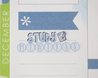 36 Study Daily Habit Stickers  | Planner Stickers designed for use with the Erin Condren Life Planner | 0656