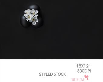 Styled Stock Photography, Easter Eggs, Black Background, Blossom, Workspace, Blogger, Desktop - S7_4