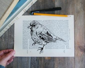 Bird print, Dictionary art, Natural print,Wildlife sketch, Book art, Hipster room decor