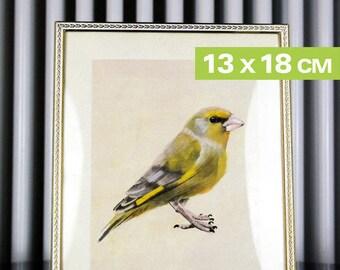 Mini-Print, Birds of the Garden, Greenfinch,  12,6x17,9cm, 300 g paper