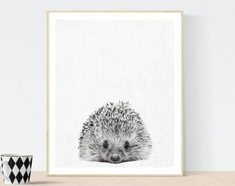 Hedgehog Print, Hedgehog Photo, Hedgehog Wall Art, animal print, Nursery Decor, Black and White Animal Photography, scandinavian print