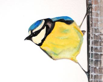 Blue tit painting/Bird illustration/watercolour/blue tit/original/gift/special occasion