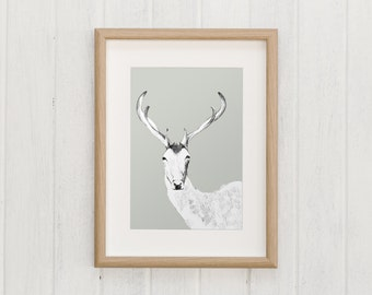 Deer illustration | Macaroom Kids