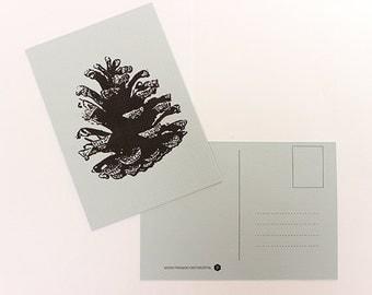 Map Pine Cone, greeting card, postcard, postcard
