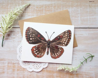 Baltimore Butterfly • Single Notecard