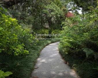 Garden Path Digital Background Backdrop