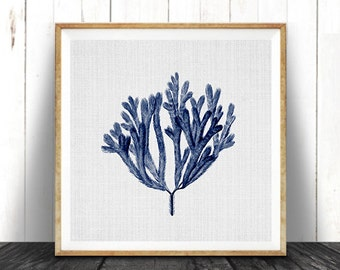 Navy Blue Square Coral Print, Coastal Decor, Seaweed Illustration, Beach Nautical, Printable Digital Download, Sea Pulp, Ocean Plant Life