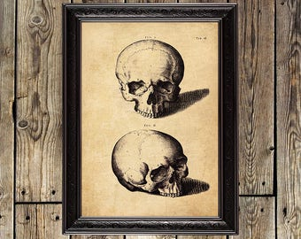 Memento Mori, Skeleton, Death, Gothic poster, Dark, Occult, Medieval, Dance of death, Magic print, skull, Skeleton poster, Gothic, print 105