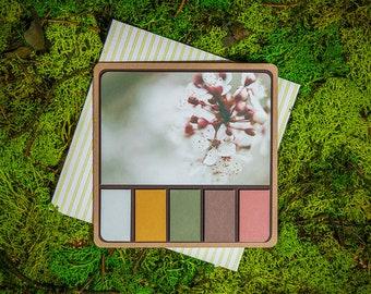 Blossom Spring Palette greeting card