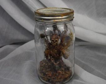 Dead Fairy in a Jar
