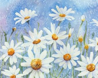 Daisies - A quality digital print from a watercolour by Pauline Merritt