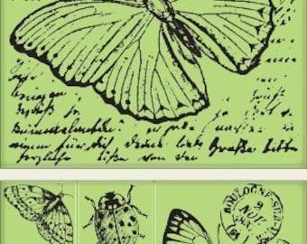 Inkadinkado Insect Amalgam Cling Stamp Set by Inkadinkado