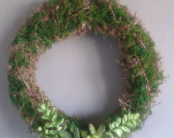 "Mossy Twig Succulent Wreath 19"", Moss, Greenery, twig, succulent, Spanish Moss, Mossy, Wreaths, Spring"