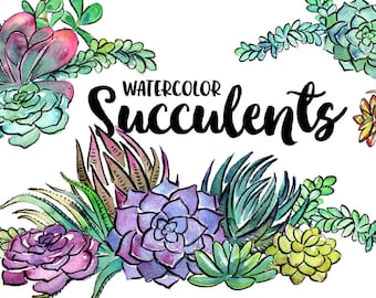 20 Watercolor Succulents Clipart - INSTANT DOWNLOAD - High Res, PNG, Printable and Pretty! For stationery, weddings, showers and more