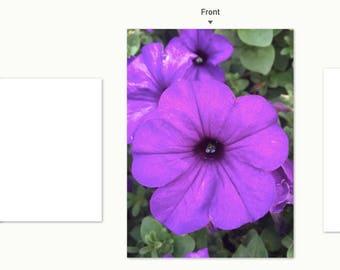 Purple Petunia notecard