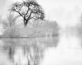 Tree reflection in black and white