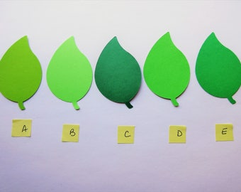 50 Large Green Leaf Hand Punched Die Cut Leaves from Cardstock Card Stock