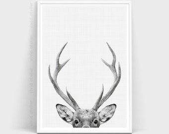"""Shop """"antlers"""" in Art & Collectibles"""